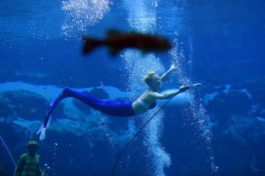 "'Mermaid' Stayce performs the main character in a underwater show ""Little Mermaid"" at Weeki Watchee Springs State Park ..."