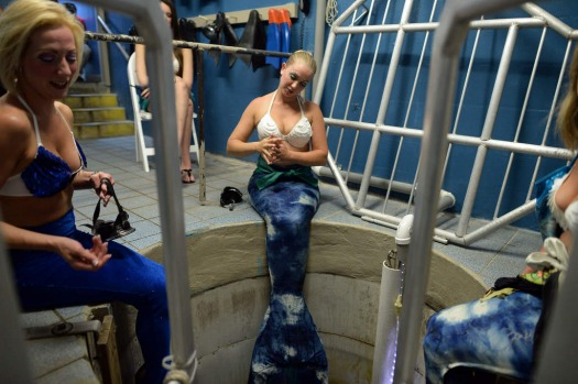 "'Mermaids' wait to dive in a tube room to take part in an underwater show ""Little Mermaid"" at Weeki Watchee Springs ..."