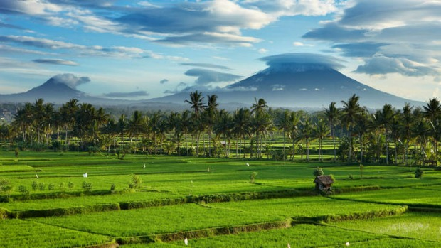 Rich tapestry: the volcanic Mount Agung looms large on the horizon.