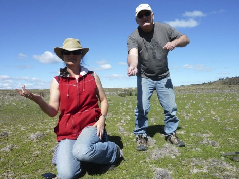 Mark Selmes,  vice president of the Goulburn Field Naturalists Society, untangles a cobweb with fellow naturalist Imelda ...