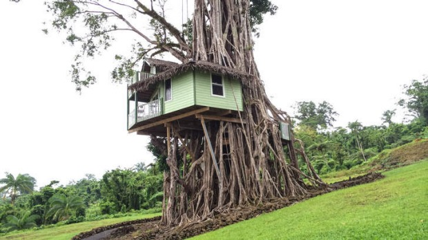 Lupe Sina Treesort, Samoa review: Out on a limb