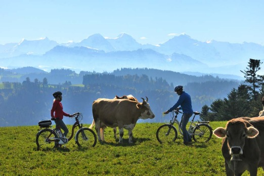 Picture perfect: With soaring snow-capped mountains, cows on mount tops and endless green grass. All you need to do in ...
