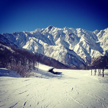 Stunning day on the hill, Hakuba, by @portiaskye