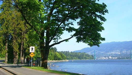 Canada's Stanley Park in Vancouver was voted the number one park in the in the world by travellers.