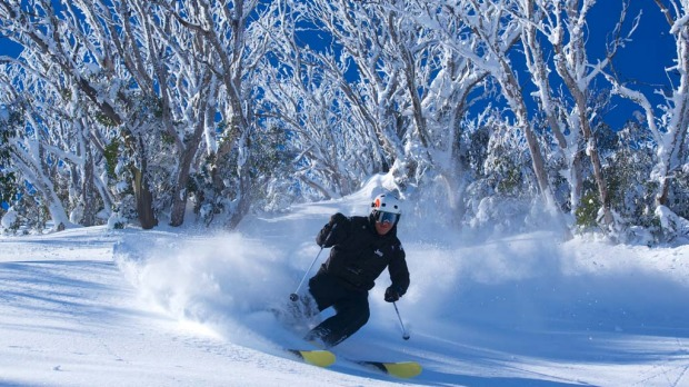 Winter Olympian Steve Lee on his backcountry tour at Falls Creek.