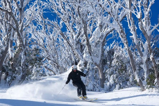Winter Olympian Steve Lee on his own signature backcountry tour at Falls Creek.