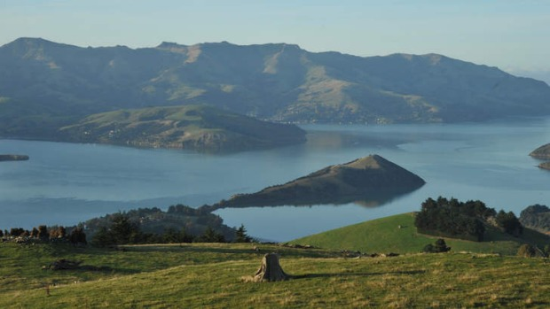 Tour de France: Akaroa Harbour.