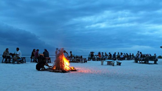 Bonfire on the beach at dusk.