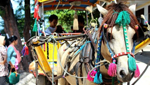 Gili T taxis are horse-drawn carts.