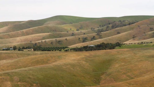 Hills of Fleurieu Peninsula.