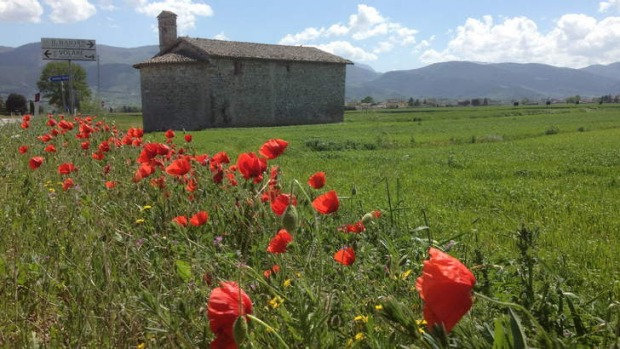 The Umbrian countryside.