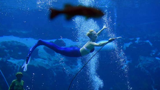 A 'mermaid' performs at Weeki Watchee Springs State Park in Florida.