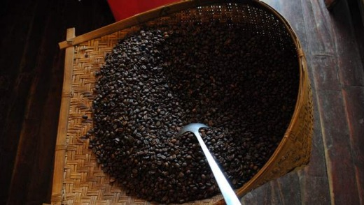 Roasted coffee beans at Hansa Coffee.