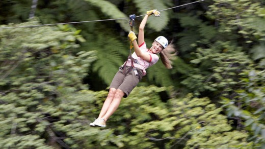 Zip-lining through the forest.