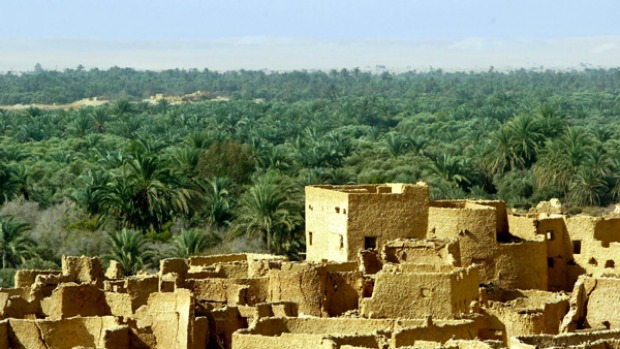 Edge of Egypt ... the deserted town of Shali in the Siwa oasis.