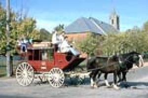 Horse drawn carriage in the streets of Beechworth