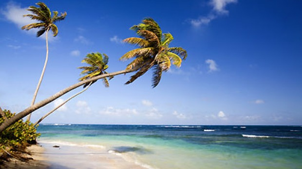 Luxury hotspot Nevis is offering tourists a rebate on the cost of their flights.