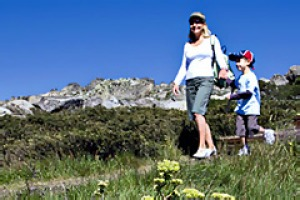 Great outdoors ... flower fields and walking trails.