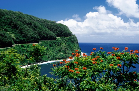 Hana Highway, Maui island, Hawaii. Driving the Hana Highway is like playing snakes and ladders on wheels. Down the ...