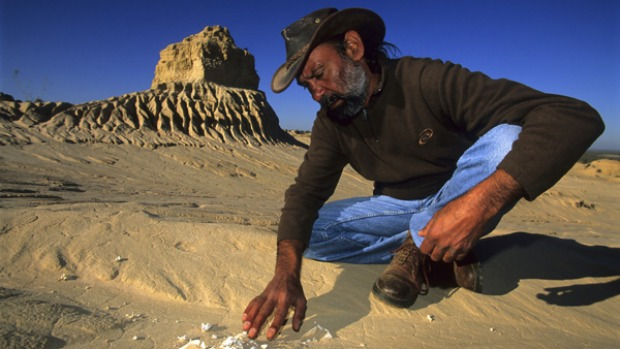 Prehistory ... animal skeletons in the dunes of Mungo National Park.