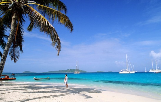 Petit St Vincent (PSV) is 46 hectares of rolling hills surrounded by three kilometres of white sand beaches - and here's ...