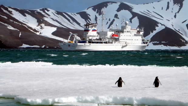 Penguins welcome the Peregrine Voyager to the Antarctic.