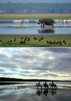 Natural wonders ... above, wildlife galore on Lake St Lucia; below, a Bhangazi horse safari on Eastern Shores.