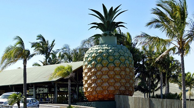The Big Pineapple, in Nambour, Qeensland.