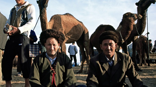 Remote beauty ... camel dealers at Tolkuchka Bazaar.
