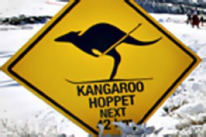 One step at a time ... Kangaroo Hoppet racers near Falls Creek.