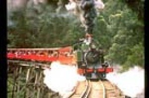 The Puffing Billy makes its way through the Dandenongs