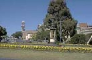 Flower gardens in roundabouts and Geelong's City Hall in the background