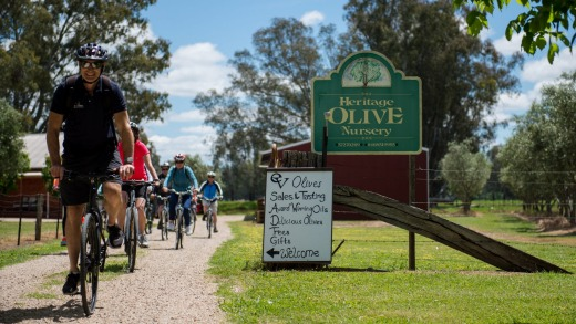 Cycling around Beechworth.