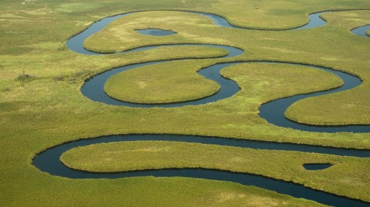 The Okavango river in Botswana.