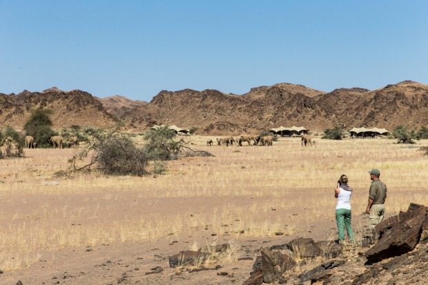 10    SERRA CAFEMA CAMP, KUNENE, NAMIBIA. All canvas-walled and timber-floored and thatched-roofed, these rooms bring ...