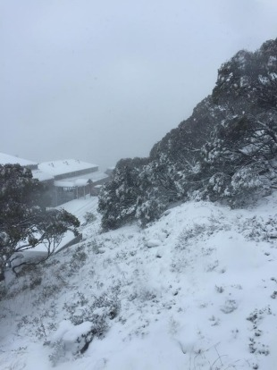 Over ten centimetres of snow fell in Mt Hotham over the weekend.