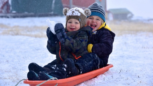 Ari Payne 4, with his brother Byron 2, gets amongst the fun in winter wonderland of Falls Creek today.