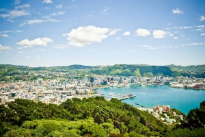 The view of Wellington from Mt Victoria.