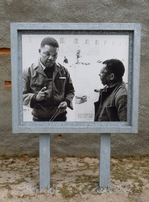 A photo of Nelson Mandela and Walter Sisulu when they were prisoners at Robben Island under apartheid regime stands at ...