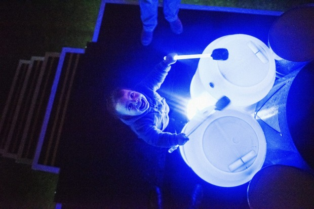 Jackson Hovenden, a 2 year old from Springwood playing the drums at the Pyrmont Pyro display.