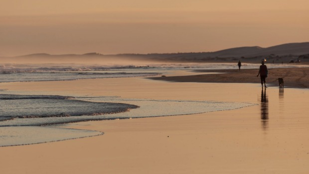 Stockton Beach. Port Stephens goes far enough back to make the sea disappear and make you think you're in the desert.