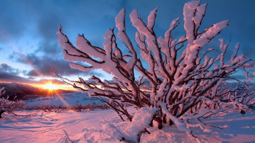 Sunset paints the snow pink at Falls Creek.
