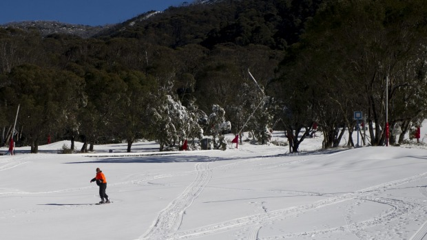 A worker gets in a sneaky run at Thredbo before the crowds arrive.