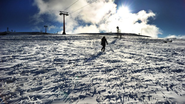 Snow covered grass and lenty of man made snow on the Bourke street run at Mt Buller for the opening this weekend. 3rd ...