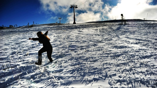 Snow covered grass and plenty of man made snow on the Bourke street run at Mt Buller for the opening this weekend.