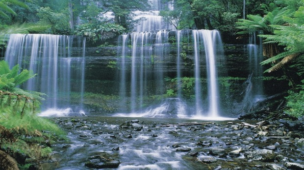 The gorgeous Russell Falls is very accessible.      Russell_Falls