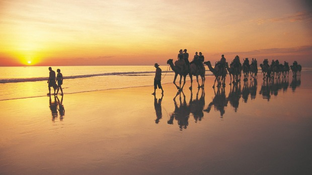 If you get tired, try hitching a ride on one of the camel trains that meander along the beach every morning and ...