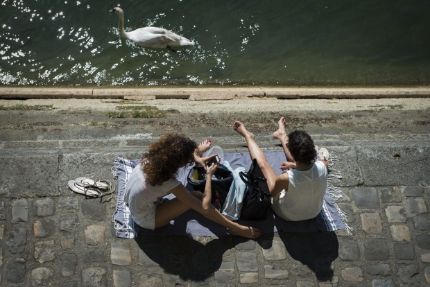 A swan swims in front of people sunbathing along the Seine river in Paris, as the temperature reaches 30 degrees.