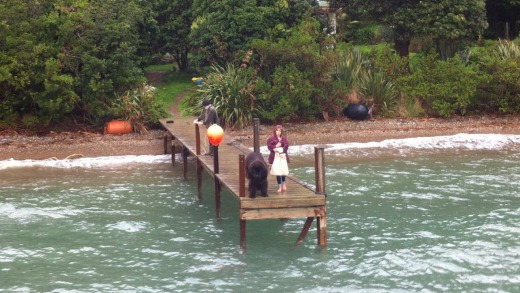 The Cooper family's giant Newfoundland dog, Kuranui, awaits the arrival of the Magic Mail Boat.