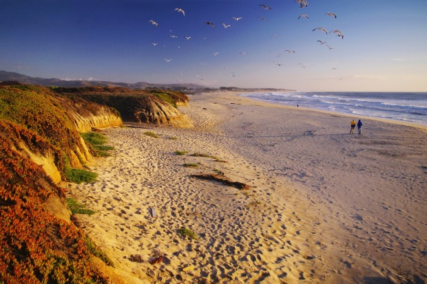 Half Moon Bay, USA: I don't imagine that I'm suddenly going to acquire some sort of artistic talent in my old age, but ...
